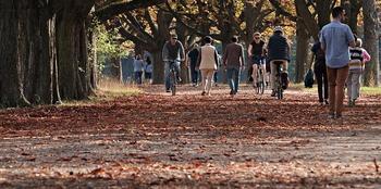 Mennesker i park